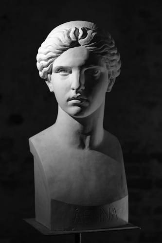 Athene (3)
